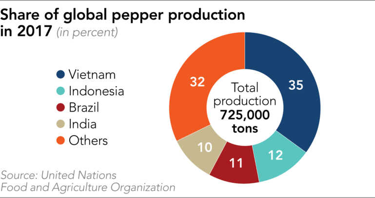 black-pepper-production