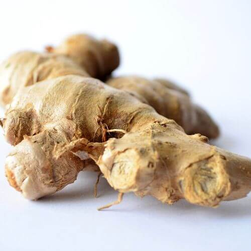 dry-ginger-suppliers
